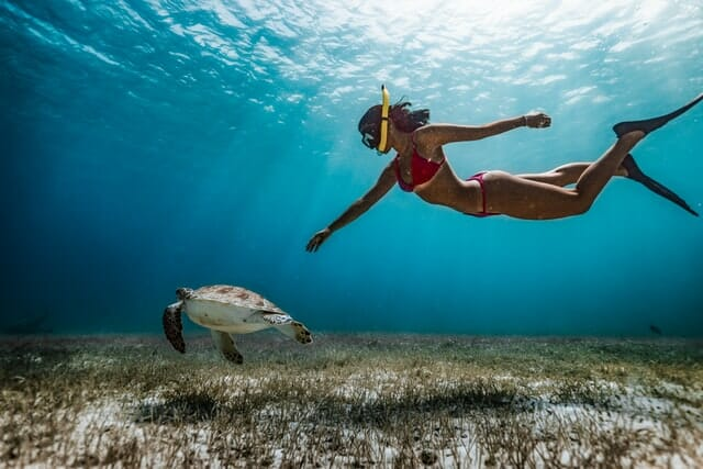 How To Snorkel: Beginner Guide + Tips